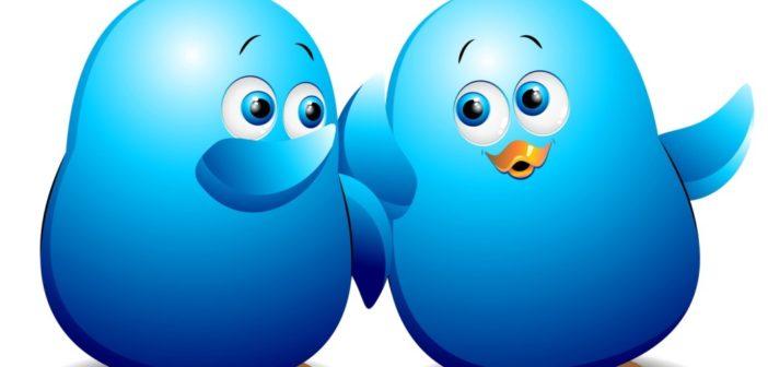 Talvi y el Twitter